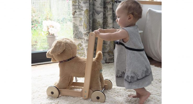 Top Three Myths About Baby Walker Toys That Should Not Be Believed!